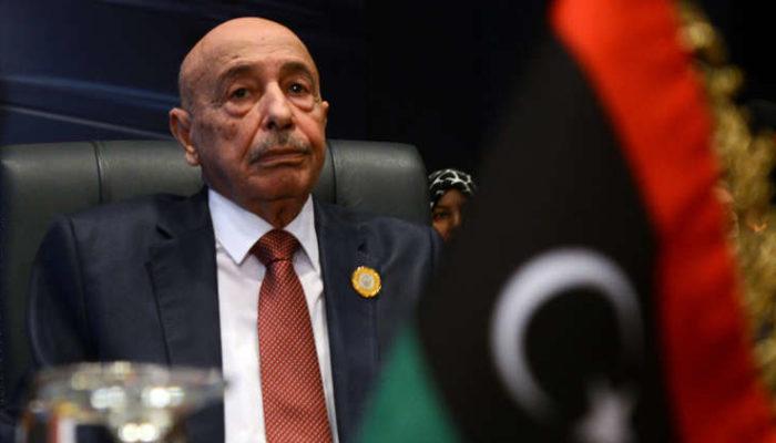 المستشار صالح : تركيا لا تستطيع فعل شيء وتصريحاتها مجرد كلام